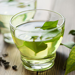 Green Tea Original Fragrance Oil