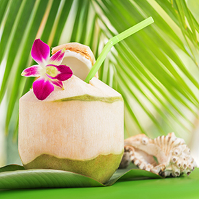 Thai Coconut Fragrance Oil